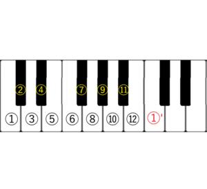 12の楽音画像