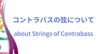 コントラバスの弦イメージ画像